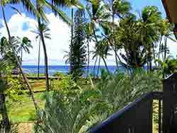 Kuhio Shores #213 - Picture 3